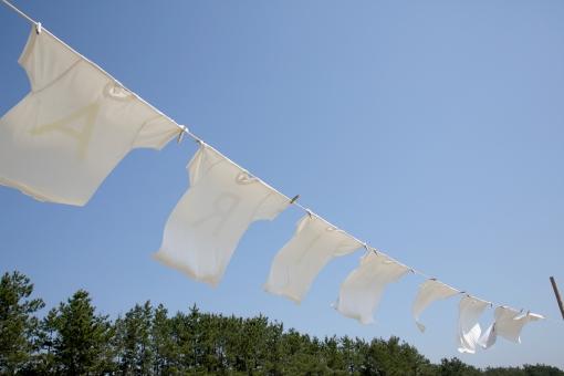 【簡単】お気に入りの服を長く着るために私が実践する洗濯方法をご紹介!